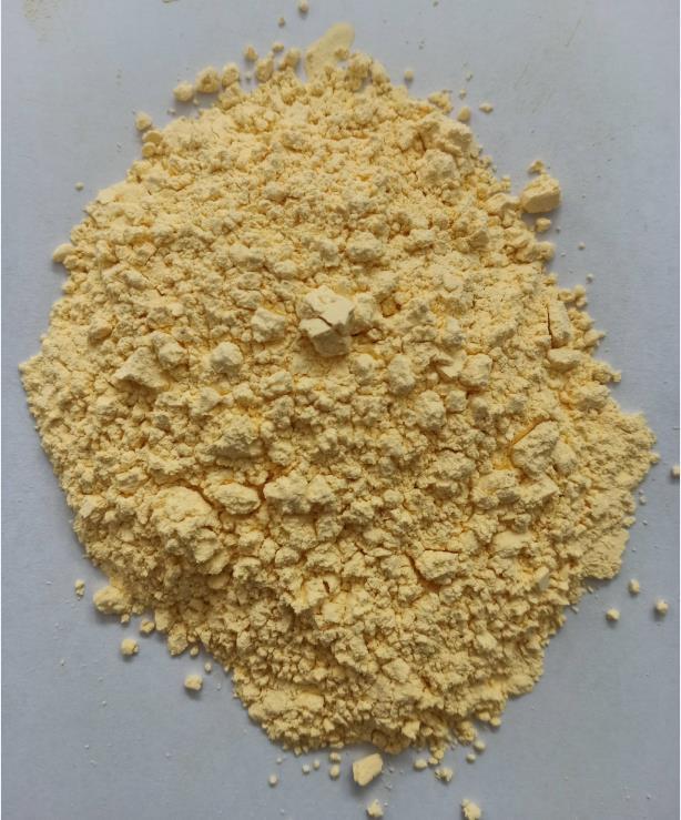 微生物蛋白粉